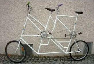 So sehen jetzt unsere Tallbikes aus