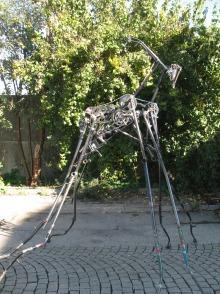 foolpool fahrradtiere (1)