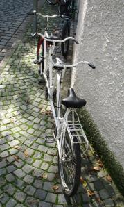 tridem bikekitchen (1)